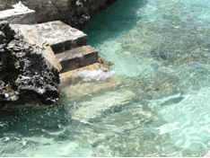 turks-and-caicos-steps-to-aqua-water