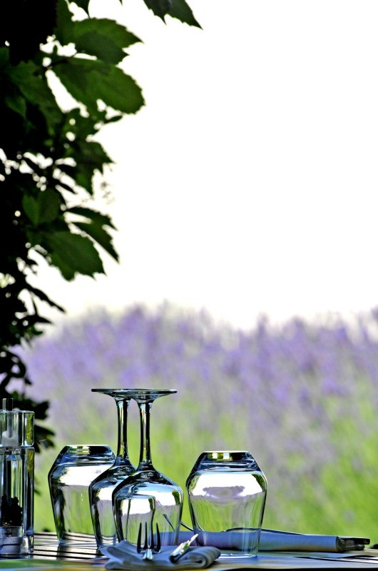 Wine Glasses in Provence, France Lavender Field