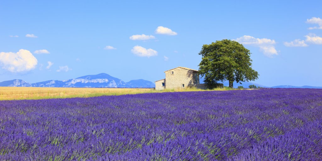 what to see in provence