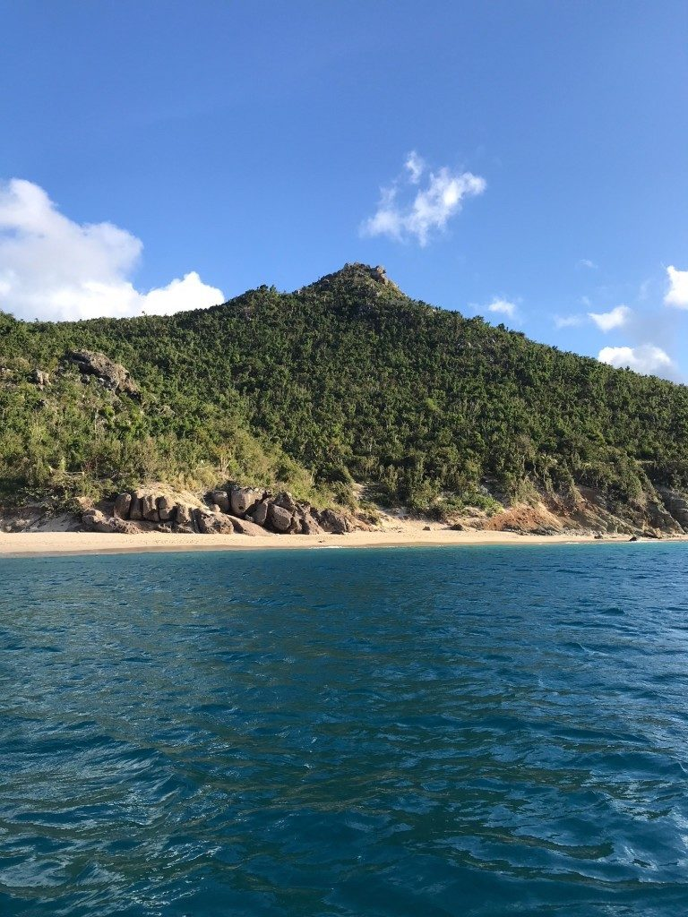 I expected to see a dry, brown island - instead, it couldn't have been more green. This is the view of Colombier beach from a boat.