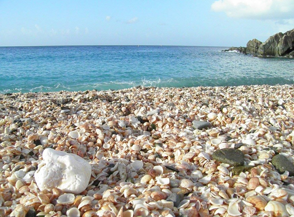 Shell Beach, credit St Barts pour les Intimes
