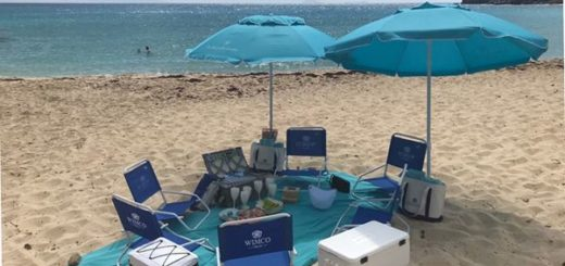 WIMCO Picnic on the beach, St Barths also known as st barts